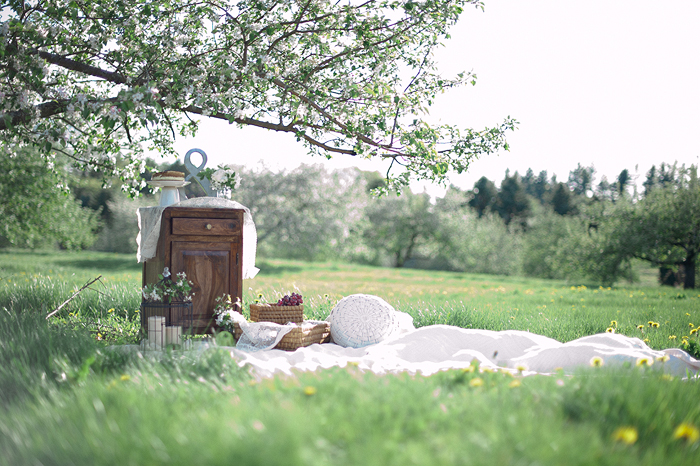 A romantic orchard Engagement