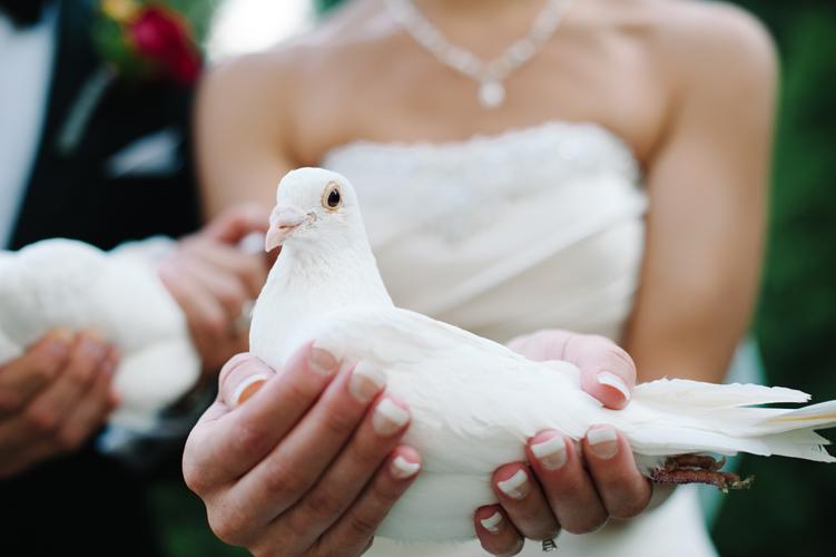 Athena Pelton Wedding071